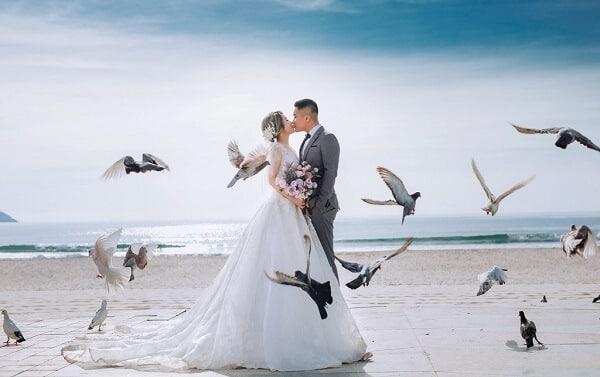 Váy cưới màu trắng chụp ngoại cảnh với bồ câu thật nên thơ